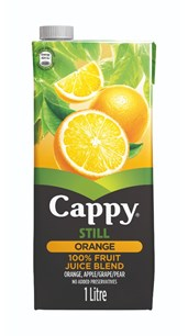 Cappy Orange 1L