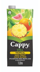 Cappy Tropical 1L